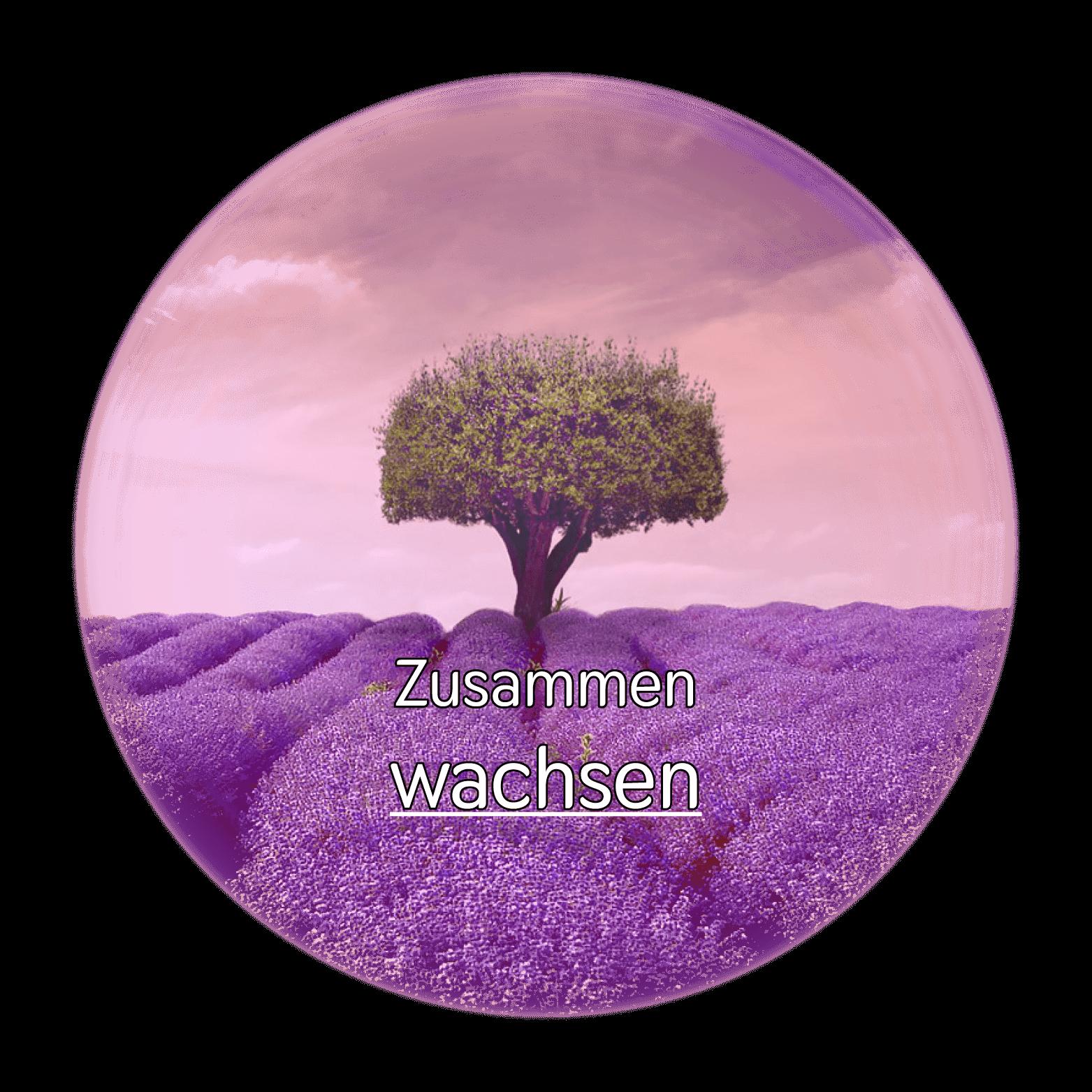 Baum rund